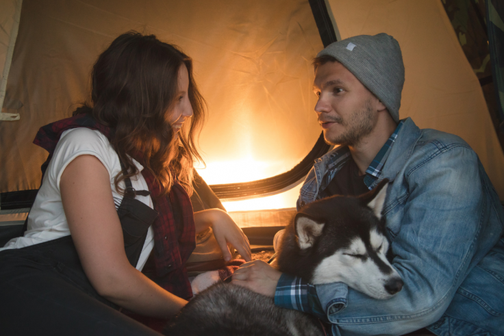 The Best Tents for Dog Owners