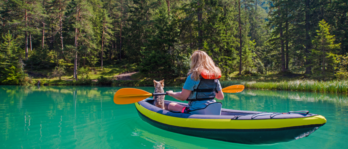 Can Dogs Go In An Inflatable Kayak